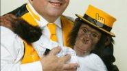Забавное шоу обезьян